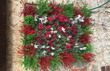 Pixel Garden Living Wall Hy-Tex UK Ltd_130
