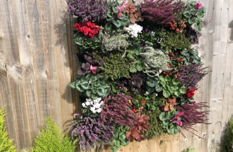 VertiVerd Living Wall Hy-Tex UK Ltd_8